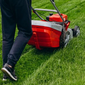 lawn-mowing-gold-coast